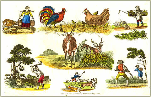 Early Picture Sheet by Willian Darton & Joseph Harvey 1817